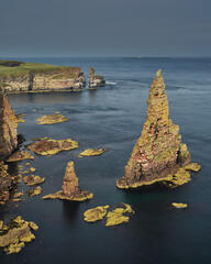 Sunlight finally escapes the cloud and paints the dagger like shapes of the Duncansby Stacks encrusted with lichen, gold.