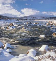 Ice Water Garve