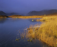 Inky Blue Gold, Loch Na Stainge, Highlands, Scotland, brief, superlative, light, transient, colour, rainbow, Black Mount