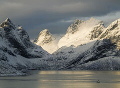 Last Boat Away, Selfjord, Lofoten, Norway,  mountains, dramatic, towering, arctic circle, snow, daylight, sunrise, fishing boats, fjord, peaks