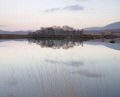 Loch Ba Blush