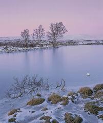 Loch Ba Pastels
