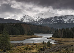 Lochaber View, Glen Spean, Highlands, Scotland, snow, peaks, Laggan, epic, silvery, light, larch, pine, summit, sunlight