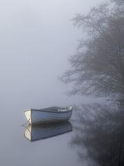 Misty Corner Rusky 2