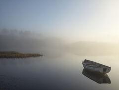 Misty Morning Rusky 1