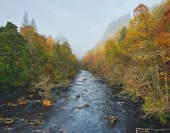 Misty River Cannich, Glen Cannich, Highlands, Scotland, hamlet, river, advection, mist, shine, textural, translucent