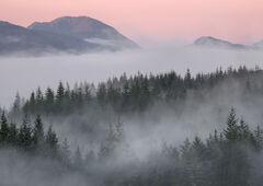 Misty Sunrise Tulla