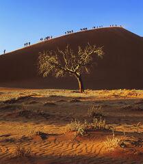 Namibian Mecca