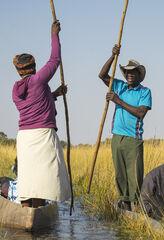 Passing Place, Okavango Delta, Botswana, Africa, swamp, waterways, crocodile, hippopotamus, expert, polers, passageways,