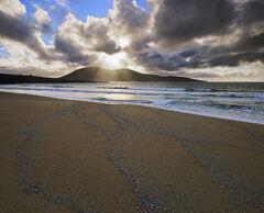 Remnant Tide
