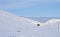 Remote, Well of Lecht, Grampian, Scotland, building, footpath, snow, lead mill, Tomintoul, nestles, folds, heather, hill