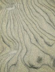 Sand Grain 1