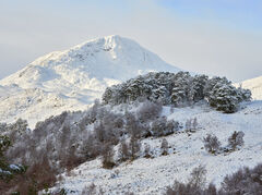 Snow Clad Sgurr Na Laplaich, Glen Affric, Highlands, Scotland, view, concealed, mist, golden, light, impact, deer, descending, cold