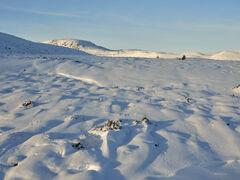 Snow Mallow Dava Moor, Dava Moor, Moray, Scotland, texture, cream cheese, summit, sunlight, peaks, troughs, velvety blue, sparkle, golden, hills