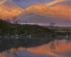 Sunrise Blackmount