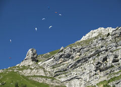Suspended Alps, Annecy, Haute-Savoie, France, high, Alps, alpine, meadow, blue, sky, climb, lush, flock, paragliders, thermals