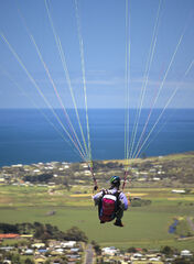 Suspended, Marineo, Great Ocean Road, Victoria, Apollo Bay, cliffs, paragliders, pilots, suspended, hanging, updraft, cliff