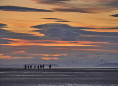 The Bird Scarers, Findhorn, Moray, Scotland, epic, sunsets, lentil clouds, estuary compress, perspective, oil rigs, waders, crowd, spooked, speckled