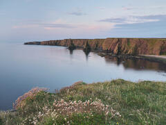 The soft red light of a rising sun paints the sea stacks of Duncansby Head from my position amongst the thrift cushions on the neighbouring cliffs.