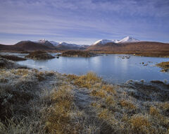 Touch of Frost Rannoch