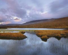 Transience Loch Clair