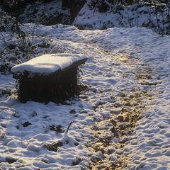 Well Trodden Path, Keston Ponds, Kent, England, snow, transformed, path, walkers, worn, fresh, winter, intimate, atmosph