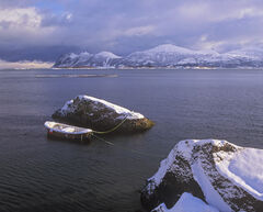Winter Berth