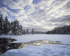 Winter Loch An Eilein
