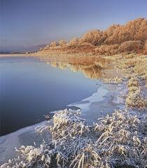 Winter Sunrise Loch Achanalt