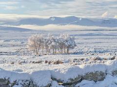 Winter Weather Crask Inn