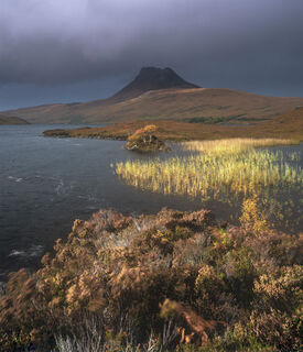 Gale Force, Loch Lurgainn, Inverpolly, Scotland, Stac Pollaidh, mountain, hill, distinctive, reed, autumn, gold, squall