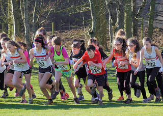 Winter Cross Country Series