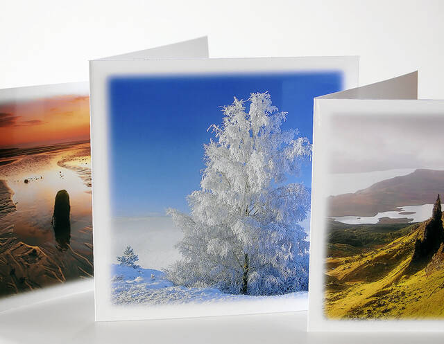 Fine Art Cards Selling Well.