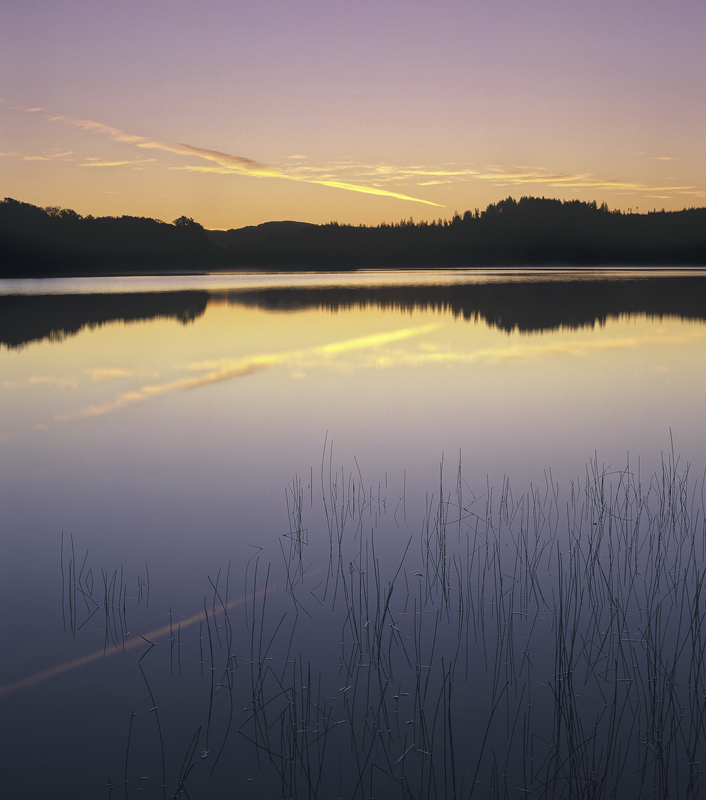 Achray Pastel, Loch Achray, Trossachs, Scotland, moment, perfection, twilight, sunrise, blends, seamlessly, smoothly, re photo