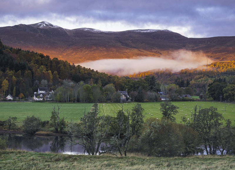 Autumn Sunrise Struy, Struy, Highlands, Scotland, hill, mist, river, lichen, trees, bracken, orange, float  photo