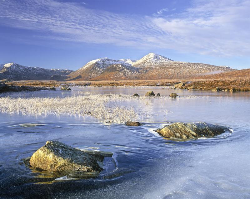 Below Zero, Rannoch Moor, Glencoe, Scotland, fine, winter, morning, dappled, cloud, frozen, embedded, ice, frosted, gras photo