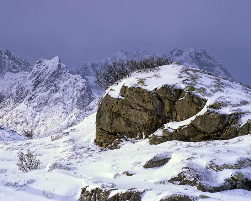 Birch Brush Sund, Sund, Lofoten, Norway, dawn, rock, badger, snow, mohican, snow storm, light, inky, sky, illuminated, w photo