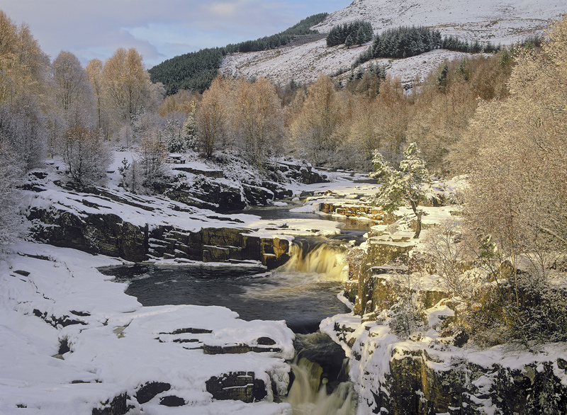 Black Water Gold, Garve, Highlands, Scotland, bridge, cascades, pools, snow, solitary, Scots Pine, brush, birch, canopy  photo
