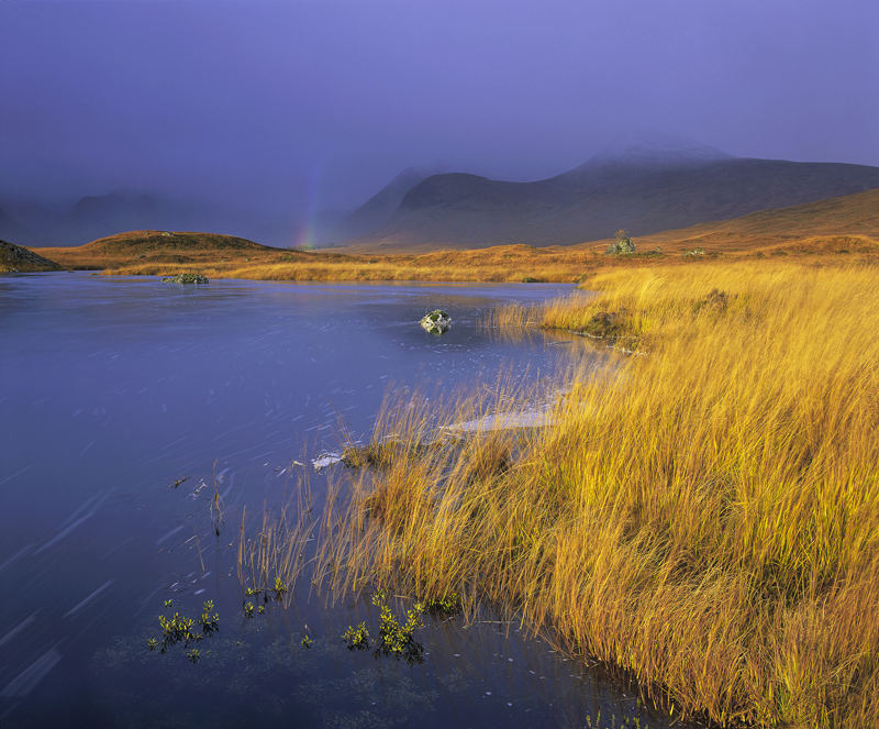 Bubble Trails, Loch Na Stainge, Highlands, Scotland, metaphor, gold, rainbow, autumnal, grasses, golden, sunlight, inky, photo