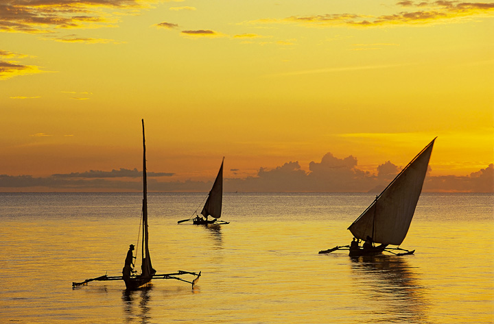 dawn exodus, Zanzibar, east coast, Africa, sailing, dhows, outrigger, silhouetted, wooden, boats photo