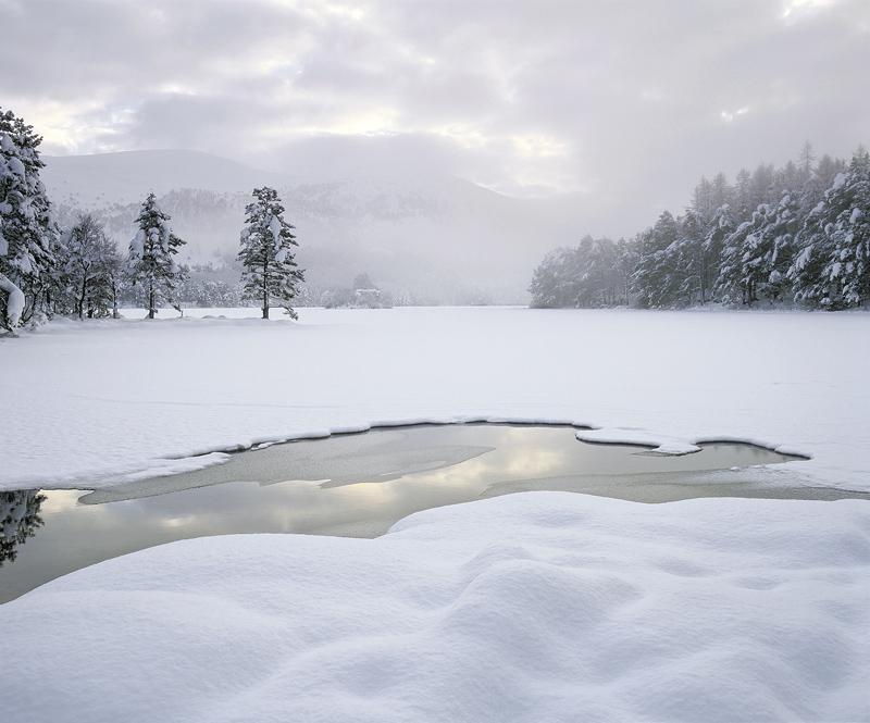 Deep Winter, Loch An Eilein, Cairngorm, Scotland, deep, unblemished, snow, dimpled, ambient, soft, overcast, sky, castle photo