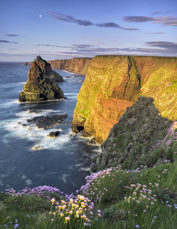 Duncansby Gold, Duncansby, Caithness, Scotland, thrift, pink, flowers, sunrise, stacks, inspiring, moon, clouds, landsca photo