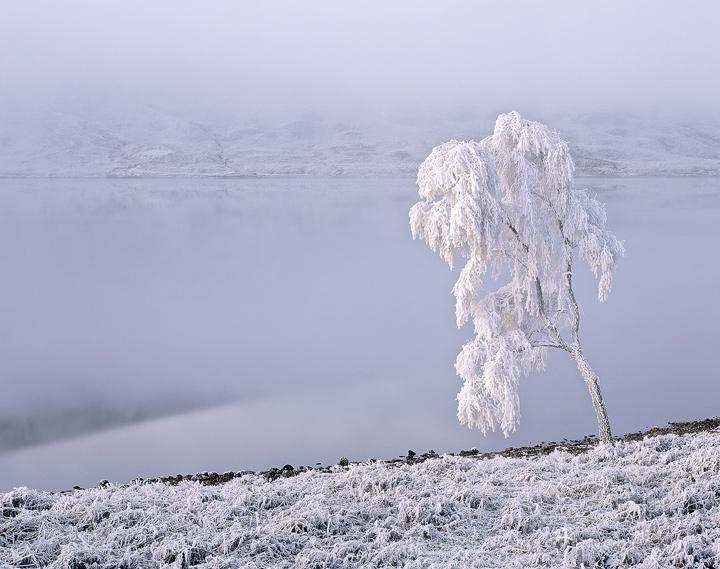 Edge Of The Freezer, Loch a Chroisg, Achnasheen, Scotland, bitter, temperature, minus, loch, mist, froze, winter, hoar,  photo