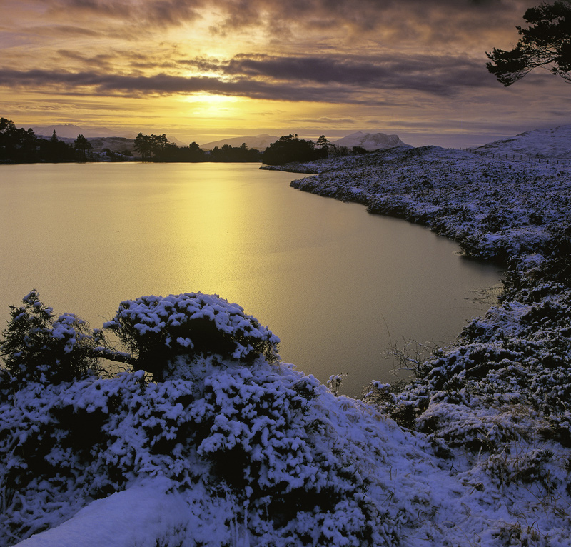 Frozen Gold, Loch Culdromman, Inverpolly, Scotland, winter, sunset, sky, burnished, gold, twilight, snow, frozen, butter photo