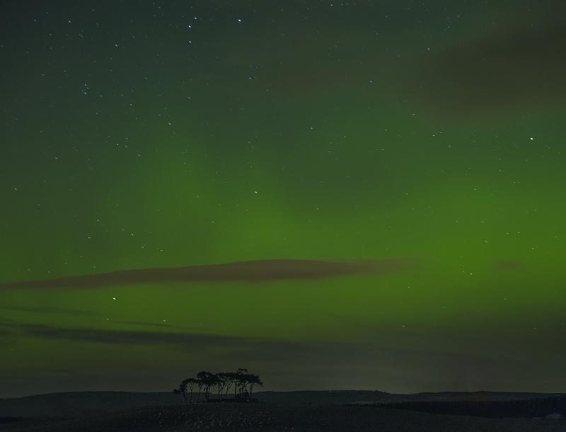 Gollanfield Aurora, Gollanfield, Highlands, Scotland, winter, evening, surge, solar, activity, vivid, trees, silhouette, photo