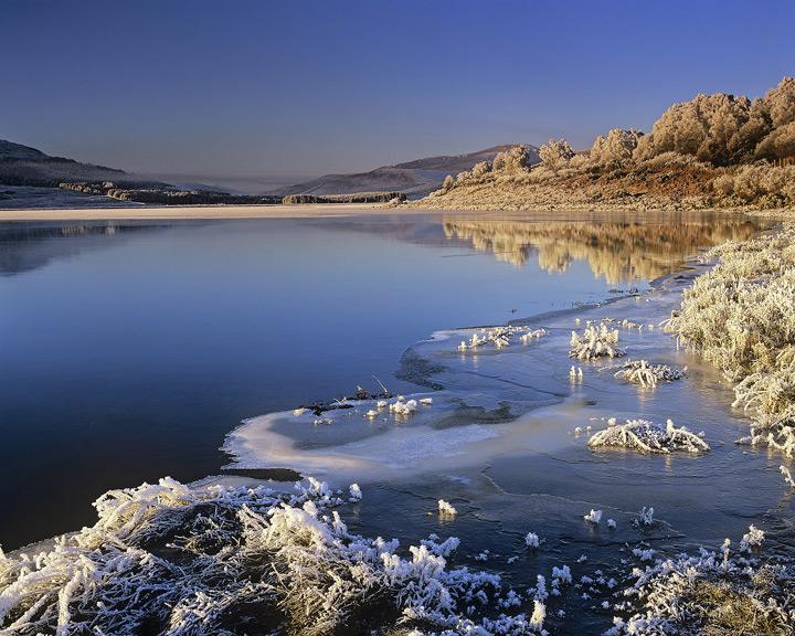 Loch Achanalt, honey, loch, achanalt, Achnasheen, Scotland, photo