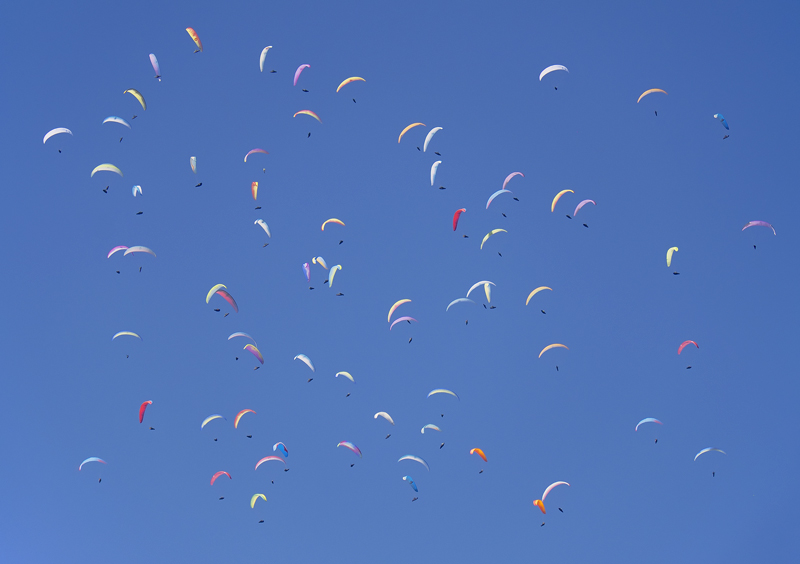 Hundreds and Thousands, Annecy, Haute Savoie, France, inspire, title, dozens, paragliders, wheeling, thermals, searching photo