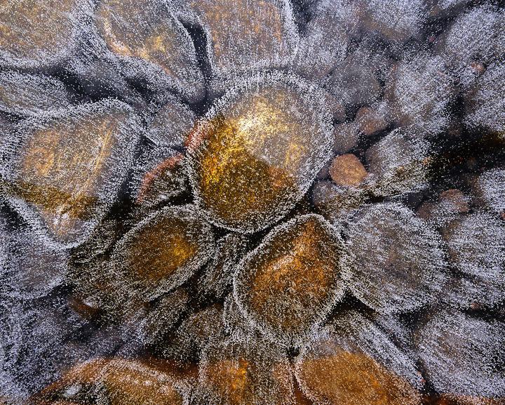 Ice Stasis 2, Lochindorb, Moray, Scotland, intimate, bleak, Dava moor, shallow, stony, leaves, degasses, bubbles, carbon photo