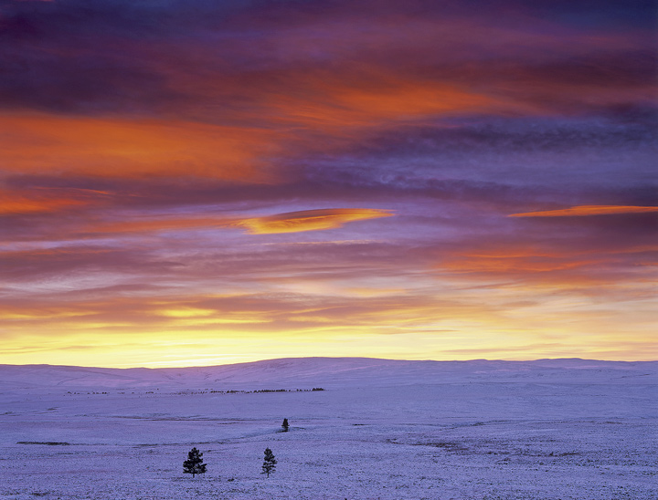 Kaleidoscape Dava, Dava Moor, Moray, Scotland, rainbow, sunset, colour, pine, scale, trees, snow, moor,  photo