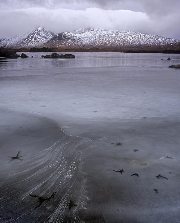 Loch Ba Starfish, Rannoch Moor, Glencoe, Scotland, bleak, elemental, winter, mountains, texture, patterns, fractures, ic photo